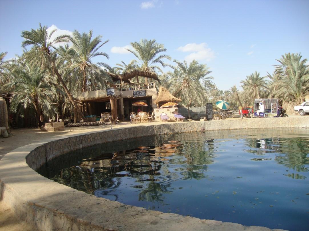 oasi-siwa-egitto-deserto (11)