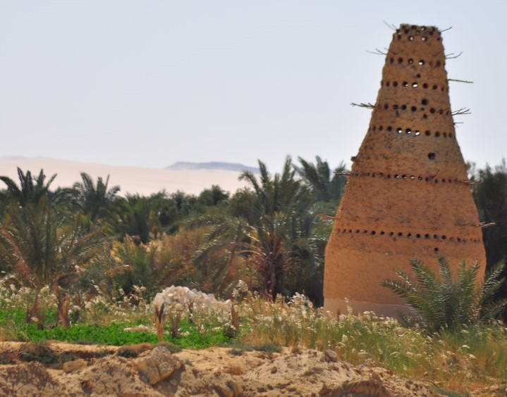 oasi-siwa-egitto-deserto (4)