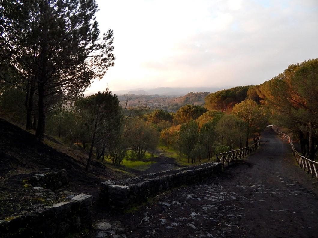 sicilyng-parchi-etna-blog-tour (1)