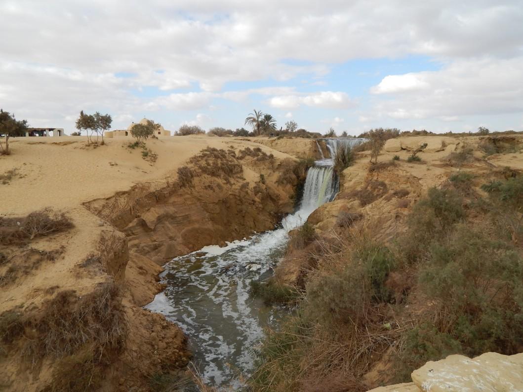 tour-oasi-fayoum-egitto-visitare (12)